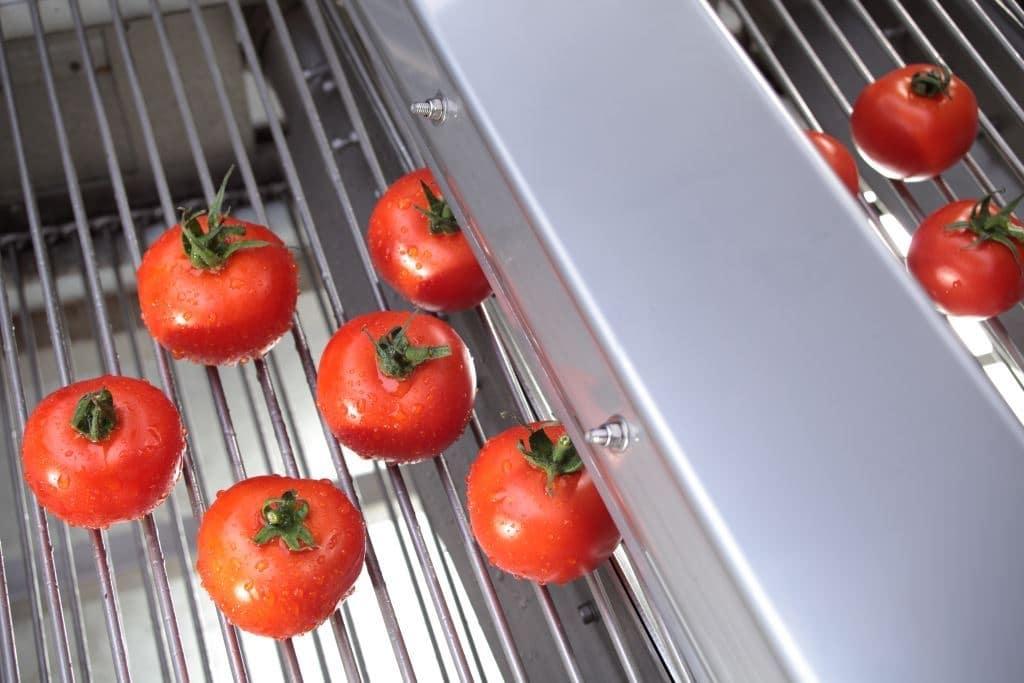 Lebensmittel trocknen mit Air Knife Luftdüsen
